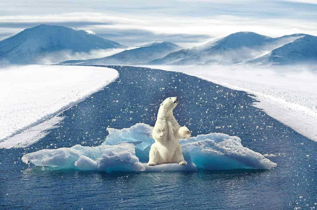 Aprobada la Ley de Cambio Climático y Transición Energética.