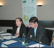 La Agencia Andaluza de Energía promueve la internacionalización de las empresas andaluzas de energía renovable.