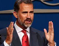 Felipe VI nunca perjudicaría a las energías renovables en España.