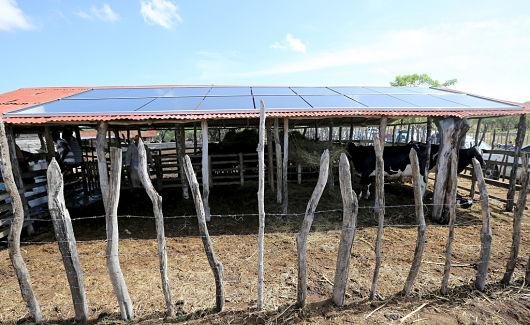 Granja con paneles solares