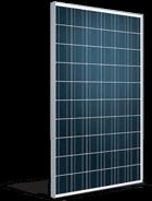 Monocrystalline Module 250wp TALESUN 250 W